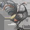 United-Kingdom - Cock-a-doodle-doo