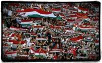 Football Chant - Hungary