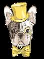 Croatia - Dog Barking - Vau Vau
