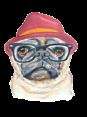 Czech Republic - Dog Barking - Haf Haf