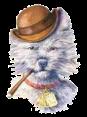 Iceland - Dog Barking - Voff Voff
