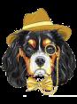 Italy - Dog Barking - Bau Bau