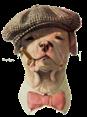 Netherlands - Dog Barking - Waf Waf