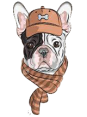 Poland - Dog Barking - Hau Hau