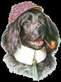 Portugal - Dog Barking - Ão Ão