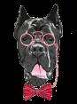 Slovakia - Dog Barking - Haf Haf