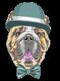 Slovenia - Dog Barking - Hov Hov