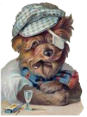 Spain - Dog Barking - Guau Guau