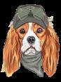 Switzerland - Dog Barking - Ouaf Ouaf copy