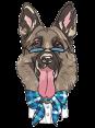 Turkey - Dog Barking - Hav Hav